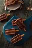 Hemlagade kalla isglassar för chokladfuskverk Royaltyfri Foto