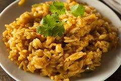Hemlagade kryddiga mexicanska ris arkivbild