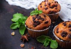 Hemlagade kryddiga muffin för chokladchip bakar ihop för frukost arkivbild