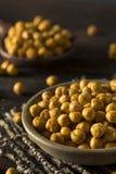 Hemlagade kryddiga rimmade bakade kikärtar Arkivbild