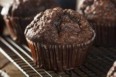 Hemlagade mörka chokladmuffin Royaltyfri Foto