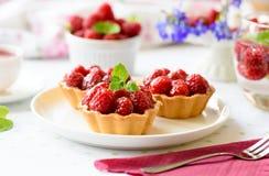 Hemlagade mini- tarts med hallonfrukter fotografering för bildbyråer