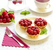 Hemlagade mini- tarts med hallonfrukter arkivbild