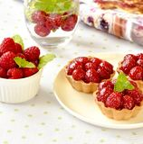 Hemlagade mini- tarts med hallonfrukter arkivfoton