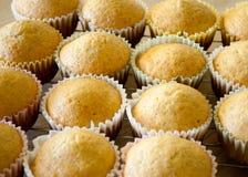 Hemlagade muffin som kyler på en kugge Arkivbilder