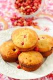 hemlagade muffiner för cranberry fotografering för bildbyråer