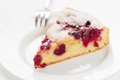 Hemlagade organiska Cherry Pie Fotografering för Bildbyråer