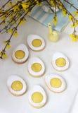 Hemlagade påskcitronkakor och forsythia som blommar ris på en ljus bakgrund royaltyfria bilder