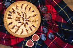 Hemlagade Plum Pie på plädet Autumn Picnic med den lekmanna- Plum Pie Wooden Background Top siktslägenheten Royaltyfria Bilder