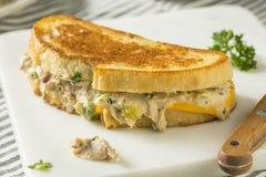 Hemlagade rostade Tuna Melt Sandwich royaltyfri bild