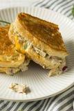 Hemlagade rostade Tuna Melt Sandwich royaltyfri fotografi