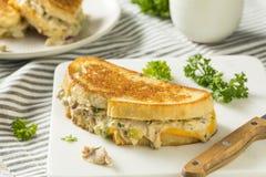 Hemlagade rostade Tuna Melt Sandwich royaltyfria bilder