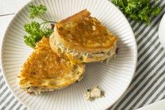 Hemlagade rostade Tuna Melt Sandwich fotografering för bildbyråer