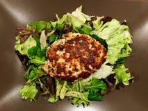 Hemlagade Salmon Meatball Served med sallad i platta/Kofte eller Kofta royaltyfri fotografi