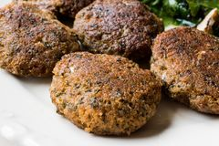 Hemlagade Salmon Meatballs Served med orange sallad royaltyfria bilder