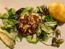 Hemlagade Salmon Meatballs Served med potatisar, avokadot och sallad i platta arkivbilder