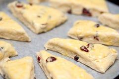 hemlagade scones för cranberry arkivfoton