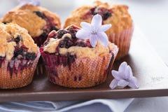 Hemlagade svarta bärmuffin för moderns dag frukosterar Royaltyfri Foto