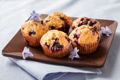 Hemlagade svarta bärmuffin för moderns dag frukosterar Arkivbild