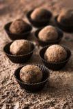 hemlagade tryfflar för choklad Royaltyfria Bilder