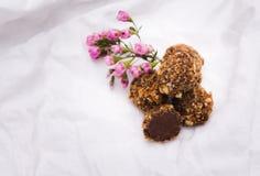 hemlagade tryfflar för choklad Handgjorda sötsaker arkivbild