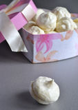 Hemlagade vaniljmarshmallower från asken Royaltyfri Bild