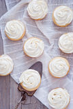 Hemlagade vaniljmuffin Arkivfoto