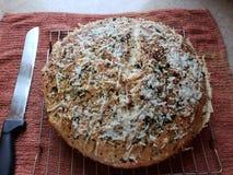 hemlagat bröd royaltyfri foto