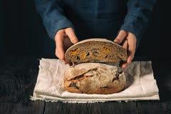 Hemlagat bröd i händerna Bröd delas in i två delar royaltyfri bild