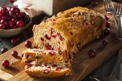 Hemlagat festligt tranbärbröd Royaltyfria Foton