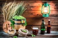 Hemlagat mörkt öl som göras av malt och flygturer arkivfoton