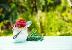 Hemlagat mjölka efterrätten med hallon smoothies Frukost i trädgården Fotografering för Bildbyråer