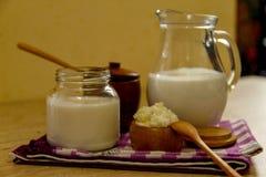Hemlagat mjölka kefir och kefirkorn - oraganic probiotic drink fotografering för bildbyråer