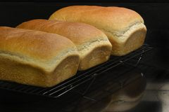 Hemlagat nytt bröd Royaltyfria Bilder