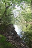 Hemlig flod Arkivbilder