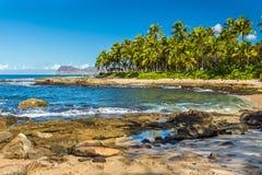 Hemlig strand Arkivbild