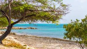 Hemlig strand i aruba Underbar strand i Aruba Fotografering för Bildbyråer