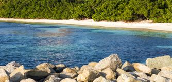 Hemlig strand i aruba Underbar strand i Aruba Royaltyfri Foto