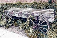 Hemlig trädgård Royaltyfri Fotografi