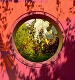 Hemlig trädgård Arkivbilder