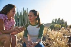 Hemlighet som delar vänner som sitter på kullen Arkivfoton