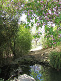 Hemligt damm (Paloma Park, Benalmadena, Spanien) Arkivbilder