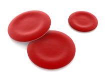 Hemoglobin Cells Royalty Free Stock Image