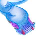 Hemorrhoids : Anal disorders, xray view. 3d render Stock Photo