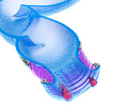 Hemorroïden: Anale wanorde, xray mening stock illustratie