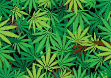 Hemp background. The green hemp, cannabis leaf background texture royalty free illustration