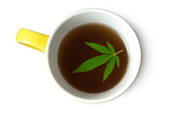 Hemp (Cannabis) leaf in cup of tea. Green Cannabis (Marijuana) leaf in cup of tea isolated on white Royalty Free Stock Images
