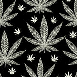Hemp Cannabis Leaf seamless pattern. Royalty Free Stock Images