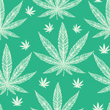 Hemp Cannabis Leaf seamless pattern. Royalty Free Stock Photos