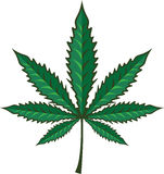 Hemp Cannabis Leaf Vector Stock Images
